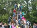 Kletterspinne (11)